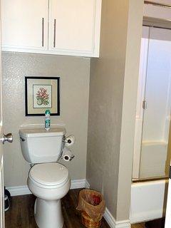 Master bathroom, tub/shower combo jack-n-jill style.