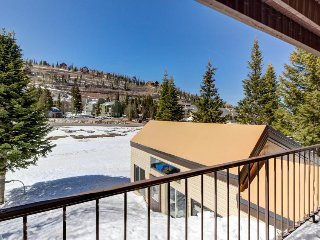 Cozy, ski in / ski out, dog-friendly studio with shared hot tub