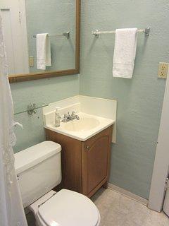 Downstairs Bath Sink