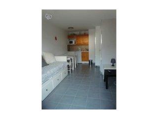 Appartement cosy sur les pistes