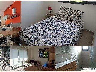 Appartement meuble avec parking et terrasse exposee Sud (105)