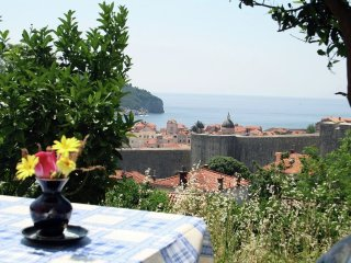 In the center of Dubrovnik with Internet, Air conditioning, Terrace, Garden (315