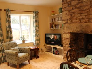 Cosy lounge with gas flame woodburner