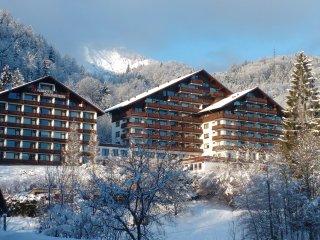 Dachstein View
