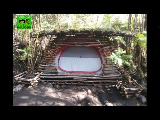 Paradise Unplugged: Fern Forest Guava Camping Pod