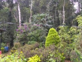 PHILIP MARY FARM STAY, THEKKADY , KUMILY, KERALA, INDIA, Diamond grade holder.