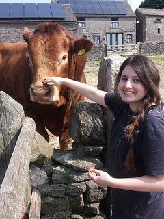 Lisa and Declan the Bull
