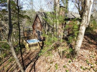 Nature's Retreat Cabin -- near Cherokee