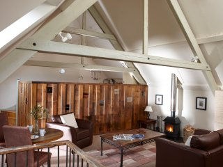 Lounge/dining room with high vaulted ceilings & contemporary log burner.
