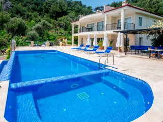 Magnificent Secluded Well-Equipped 5 Bedroom Villa, Ideal for Large Groups
