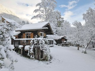 Charming Mazot (small chalet) in central Chamonix