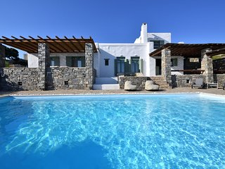 Villa Coconut with private pool next to Naoussa