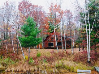 *NEW LISTING* Relaxing Family Getaway at the Two Bear Lake Cabin