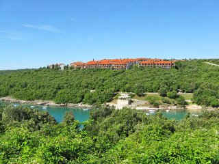 1 bedroom Apartment in Pavicini, Istarska Županija, Croatia - 5052923