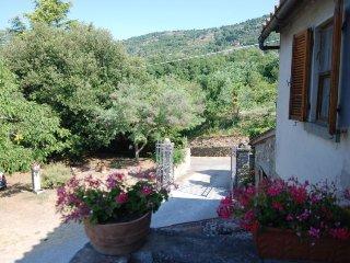 2 bedroom Apartment in Cortona, Tuscany, Italy : ref 5060726
