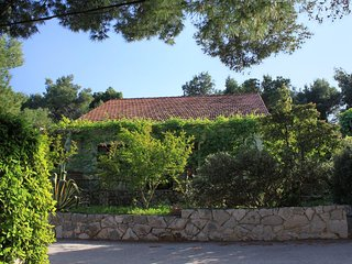 Two bedroom apartment Mudri Dolac (Hvar) (A-118-a)