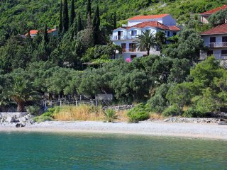 One bedroom apartment Trpanj (Peljesac) (A-258-e)