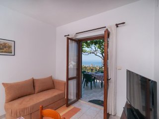 Two bedroom apartment Postira, Brac (A-3065-a)