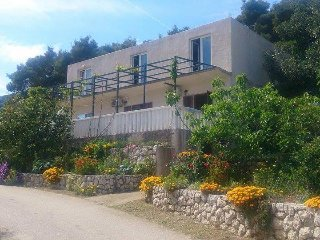 One bedroom apartment Cove Saplunara (Mljet) (A-4907-a)