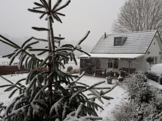 Cottage nature close to Rotterdam 900mtr from trainstation