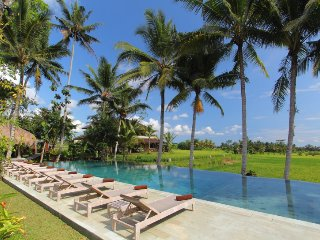 Luxury Retreat in middle of the ricefields