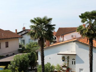 One bedroom apartment Novigrad (A-2536-d)