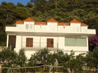 Studio flat Ubli (Lastovo) (AS-8354-a)