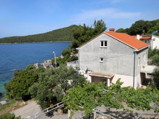 One bedroom apartment Molunat (Dubrovnik) (A-8956-c)
