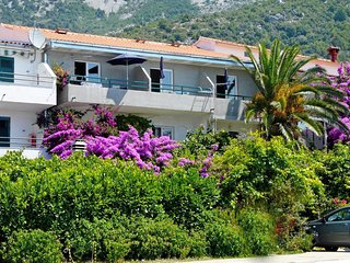 One bedroom apartment Drvenik Donja vala, Makarska (A-9654-a)