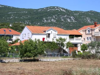 One bedroom apartment Mali Ston, Peljesac (A-10226-a)