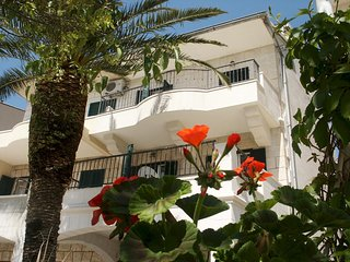 One bedroom apartment Podgora, Makarska (A-11335-a)