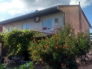 One bedroom apartment Jelsa (Hvar) (A-11676-a)