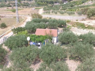 One bedroom house Bol, Brac (K-12604)