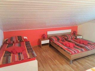 One bedroom apartment Novigrad (A-13511-c)