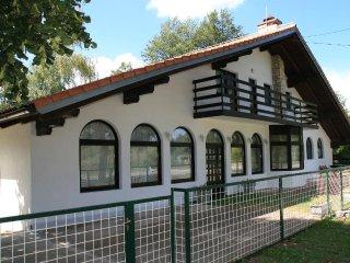 Comfortable and spacious apartment Josipdol, Karlovac (A-14304-a)