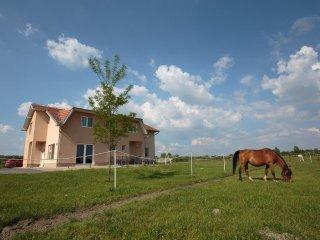 Room Bilje, Slavonija (S-14318-a)
