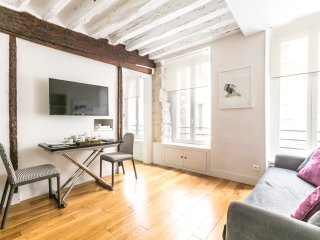 Lovely 30 sq mt in Marais district