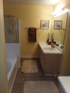 Master bathroom vanity #2