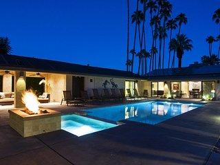 Palm Springs Contempo Oasis