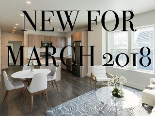 Gorgeous NEW unit in Jamaica Plain! Steps to the Subway!