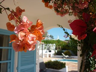 Bougainvillea in full bloom at Casa Nova