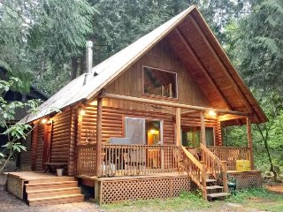 17MBR Rustic Family Cabin + Hot Tub
