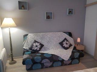 Appartement chaleureux Hyper Centre de Thonon les Bains