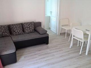 Apartment Vicko