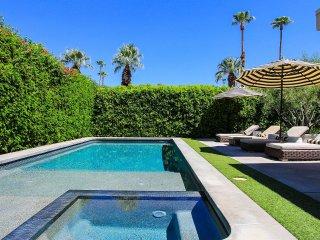 Palm Springs Modern Luxury