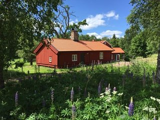Erikson's Paradise Cottage in the heart of Swedish Countryside