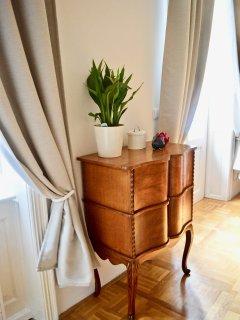 Stylish antique and designer furniture.
