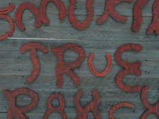 Smokin Vero Ranch Offriamo piazzole con spazio per il cavallo, penne, bancarelle, arena.