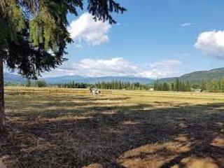 Questo è the.riding arena con Zattera montagna in background.
