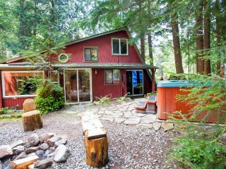 Dog friendly cabin w/private hot tub near Paradise Entrance Mt Rainier